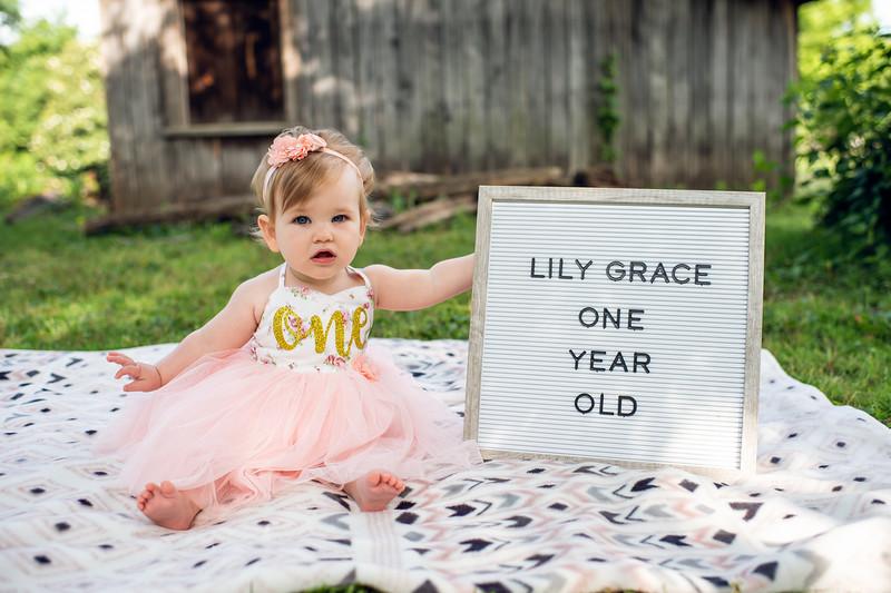Lily First Birthday 015