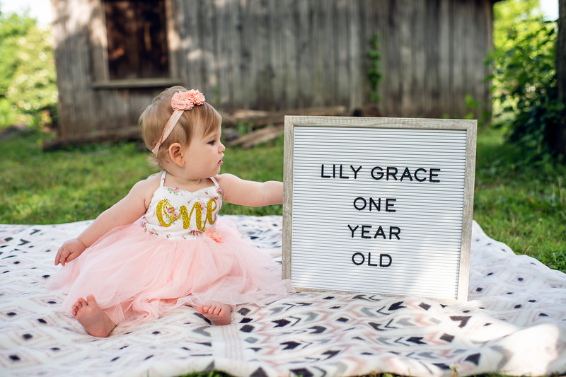 Lily First Birthday 014