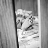 Emma Newborn 019