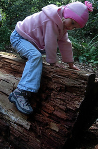 Kelly playing on a log at our camp San Mateo Memorial Park, CA