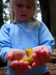 Kelly with a Banana Slug San Mateo Memorial Park, CA
