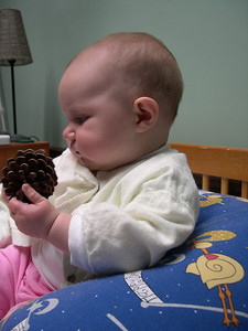 Kelly and her pine cone