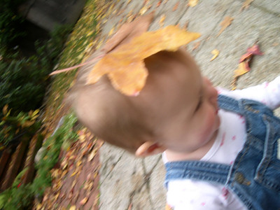 Kelly with leaf on headOakland CA USA