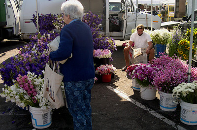 Flowers at the Marin farmer's market
