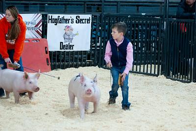 kellyville_swine_20201219-1