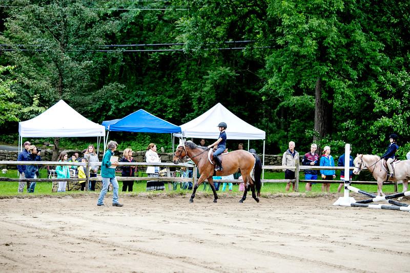 Kelsey Farm Horse Show - 2018