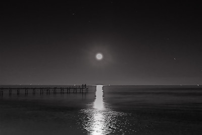 Bay Moonlight