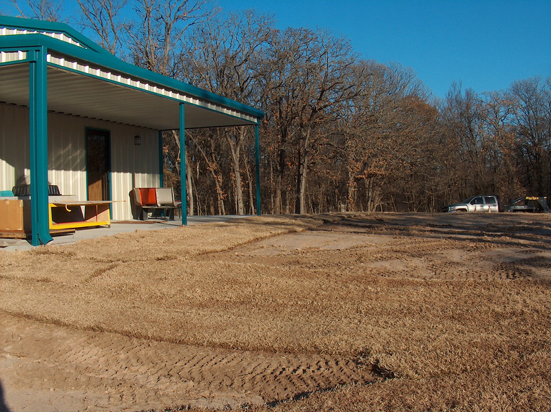 The bare areas were seeded