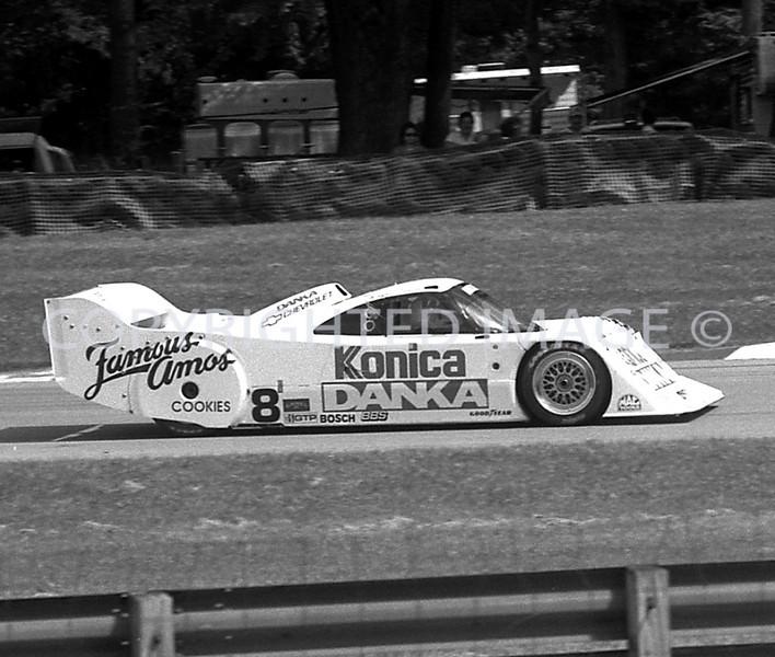 Watkins Glen, Wayne Taylor, 1993