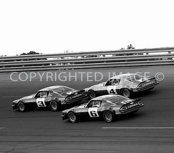 Michigan, Petty, Allison, Scheckter, IROC Race, 1974