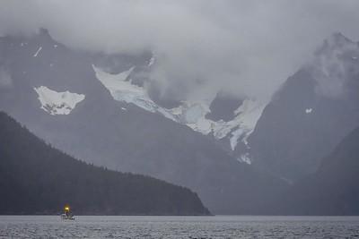 Kenai Fjord Cruise-1-6