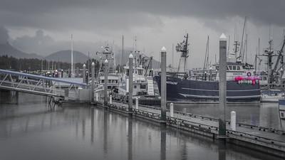 Kenai Fjord Cruise-1-3