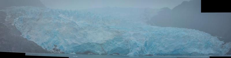 Kenai Fjord Cruise-1-29