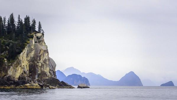 Kenai Fjord Cruise-1-12