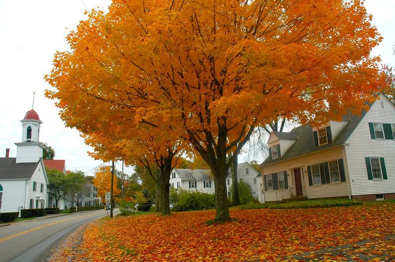 Maine Street