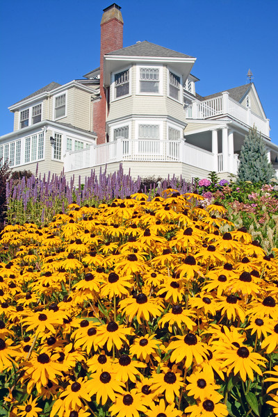 Ocean Avenue Cottage