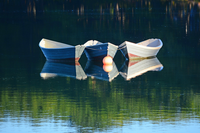 Three dories
