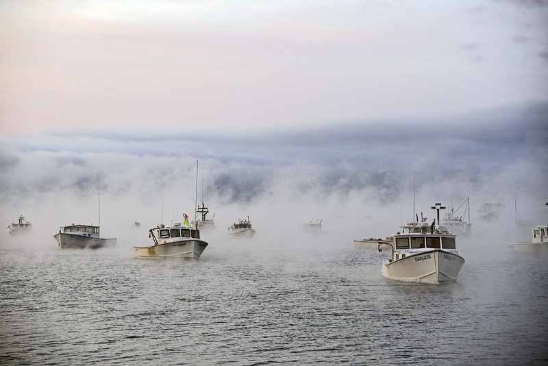 Sea smoke, Cape Porpoise