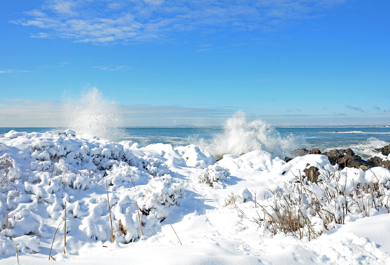 Ocean Avenue coast