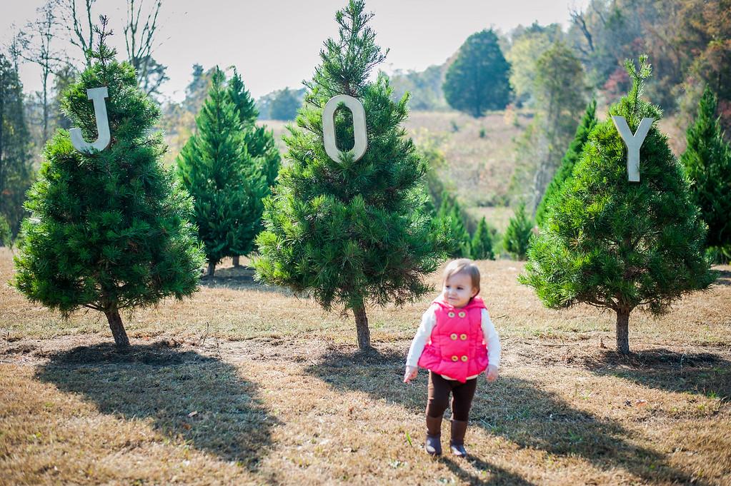 Kennedy Family: Christmas Tree Farm 2016