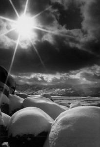 washoe Valley Snow2bw