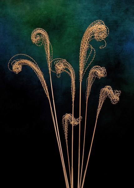 Dried Grass Bouquet