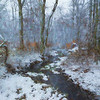Creek on a Snowy Day