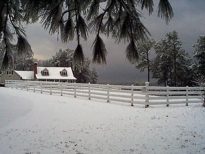 Christmas 2001 at 1st Kent Rock Meadows farm