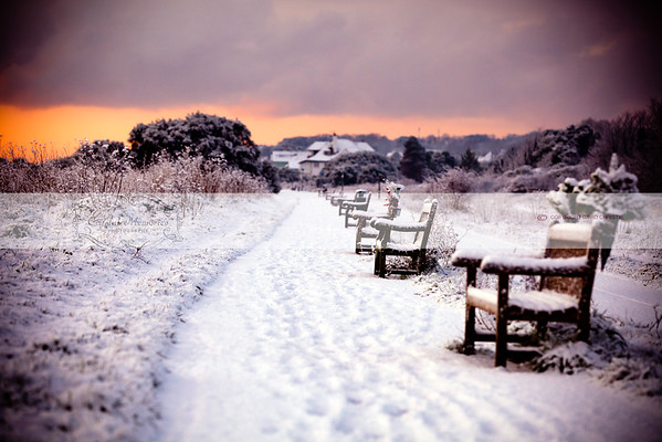 Frozen Benches on the promenade of Deal in Kent