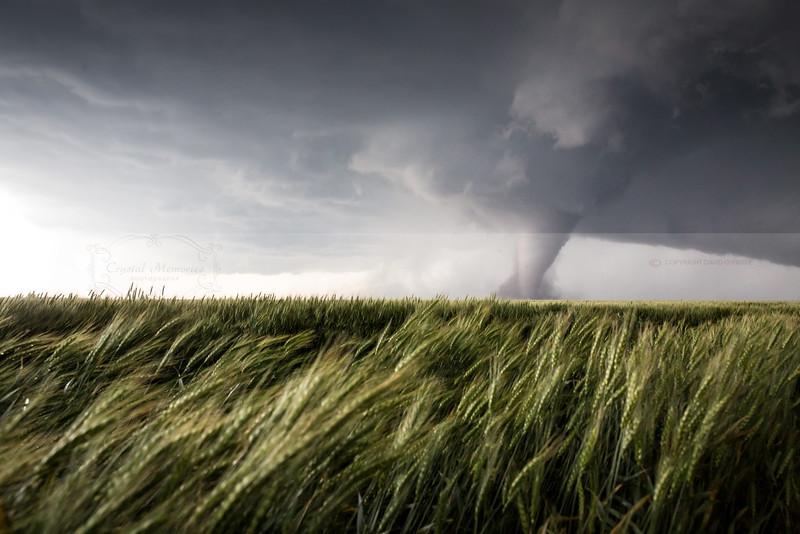USA Tornados (37 of 14)