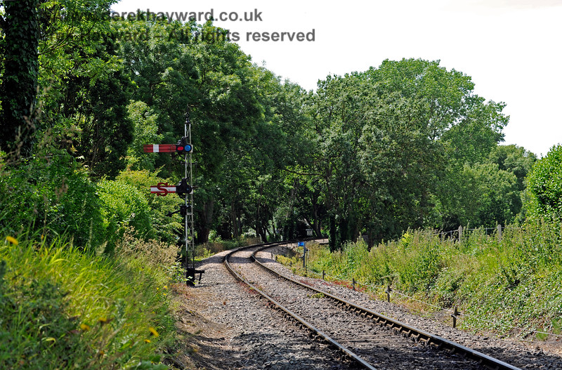 Tenterden Town Station 24.06.2015  11402