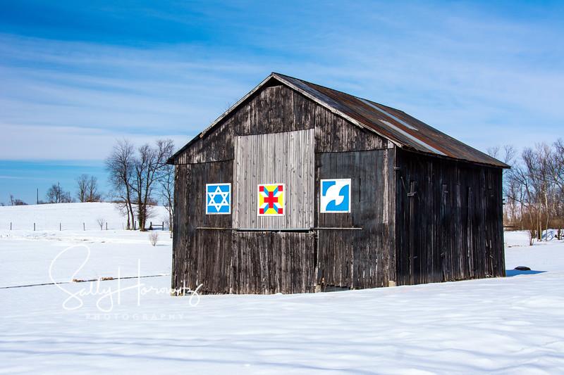 Star of David, Corner Post, Dove  (in winter)