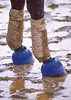 KYDerby1998-ChurchillDowns-BacksideMorningWorkouts-025