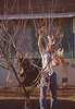 KyDerby1999-ChurchillDowns-Backside-027