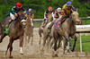 KentuckyDerby130-2004-35