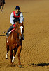 KYDerby-CDBackside-2005-10