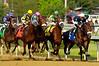 DerbyDay131-2005-27