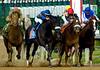 DerbyDay131-2005-32
