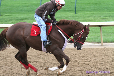 2012 Kentucky Derby Events
