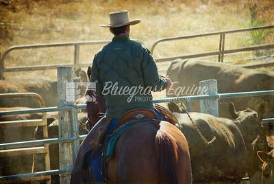 Lone Cowboy Milpitas, CA. April 2010