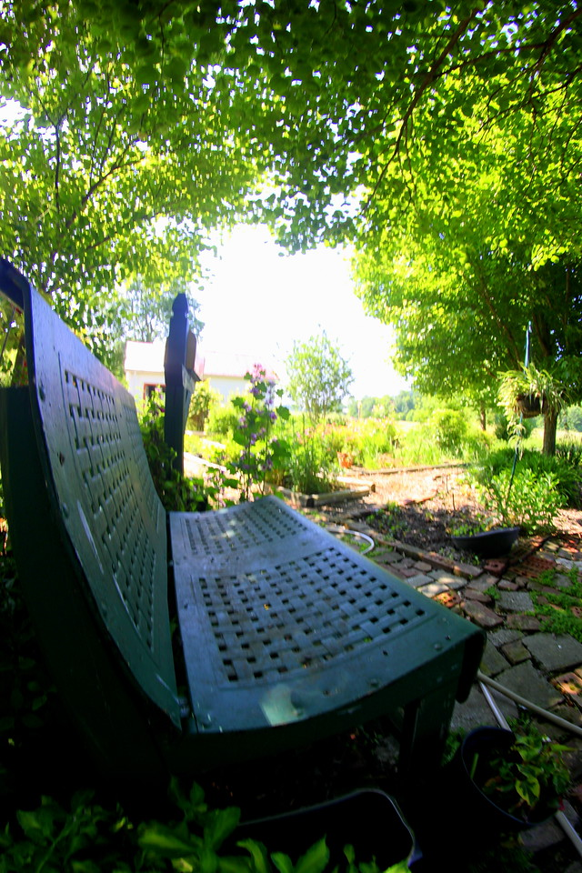 Favorite Seat in the Garden