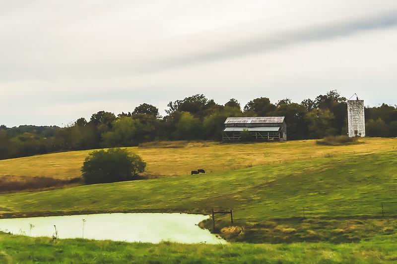 Kentucky Roadtrip Pic