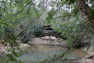Rock Bridge in the Red River Gorge Kentucky