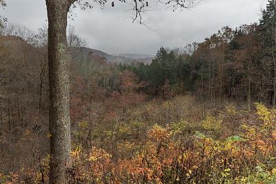 Doyel Valley Overlook