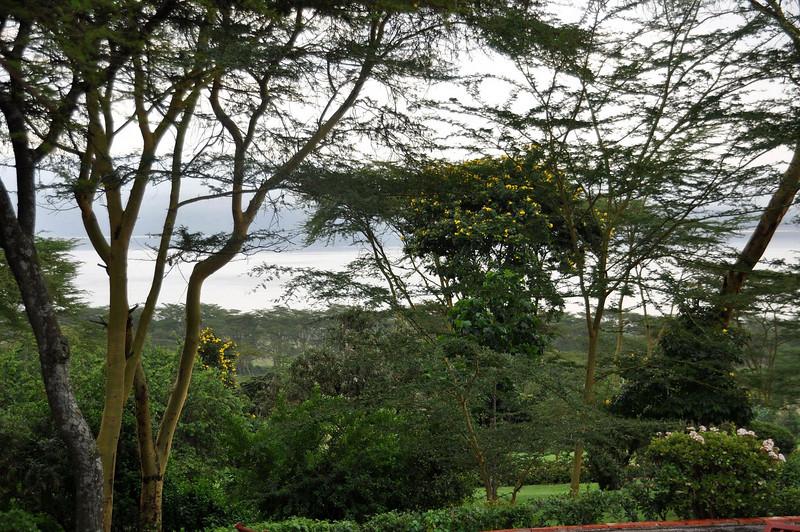 Lake Nakuru as seen from the lodge.