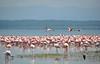 Lake Nakuru0001_53