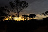 Samburu Game Reserve0001_265