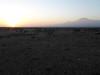 Tortilis_Camp_Amboseli_Elewana__0034