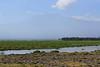 Tortilis_Camp_Amboseli_Elewana__0001