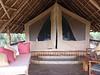 Tortilis_Amboseli__0008